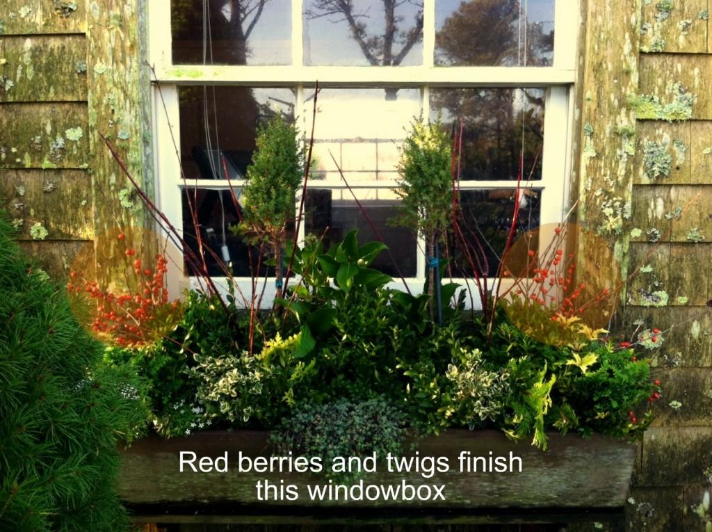 Holiday windowbox-6